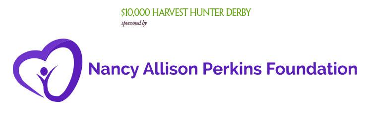 Nancy Allison Perkins Foundation